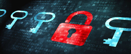 Web Application Vulnerabilities: To Protect users