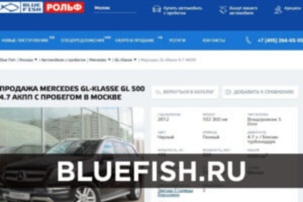 Bluefish.ru – the auction for the biggest car dealer Rolf