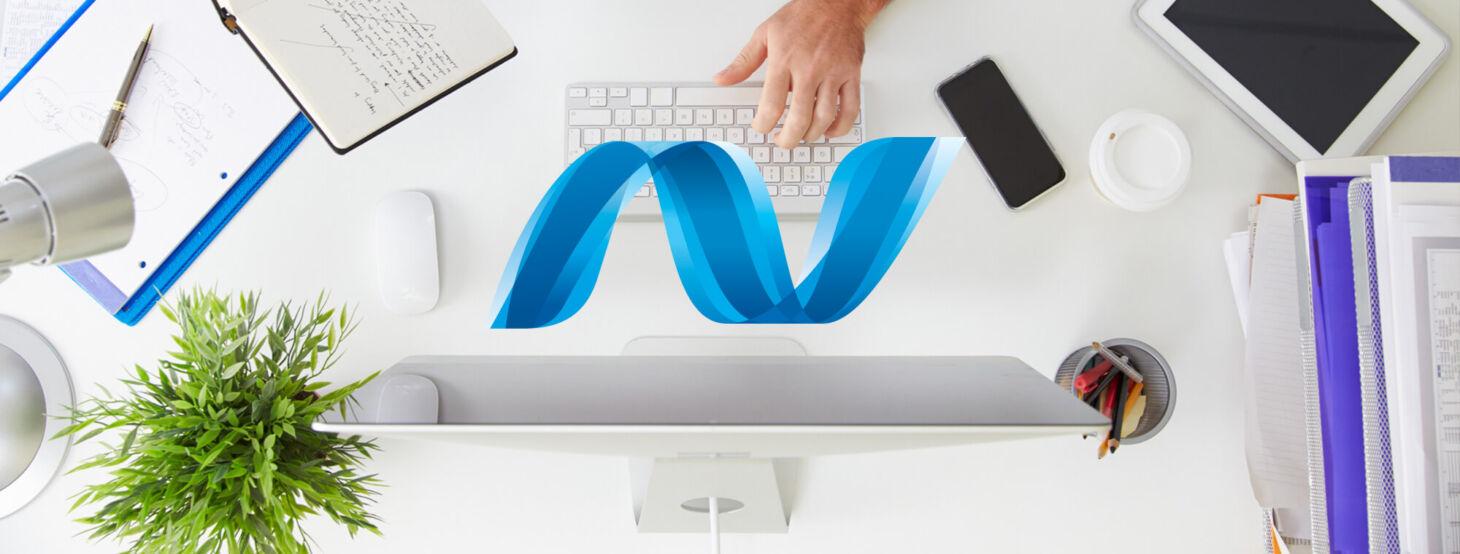 .NET Application development services