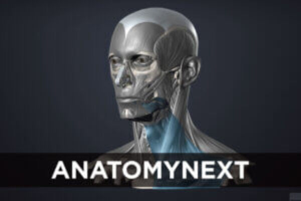 AnatomyNext