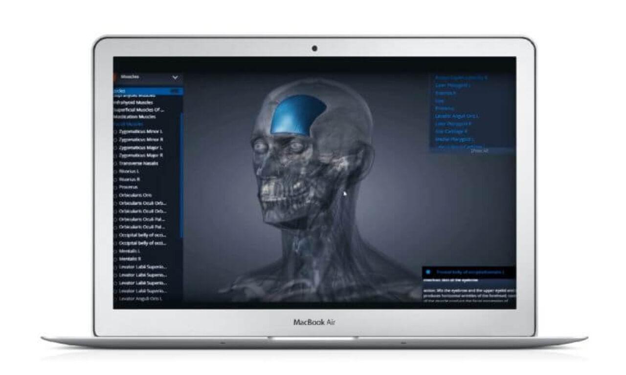 AnatomyNext - Software capability
