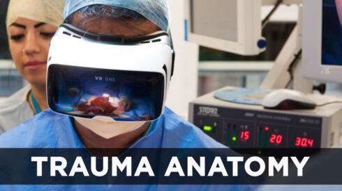 Trauma Anatomy