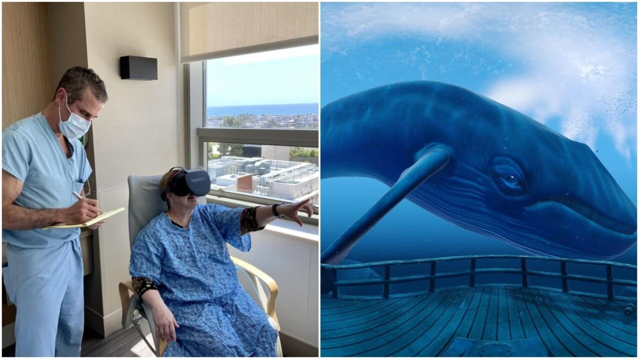 Using virtual reality to manage pain