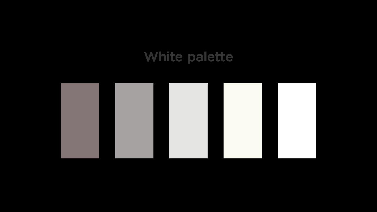 White Color Palette for Medical App UI
