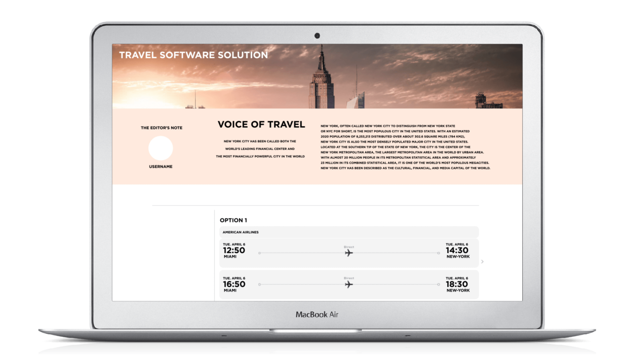 Travel Software Solution - Options